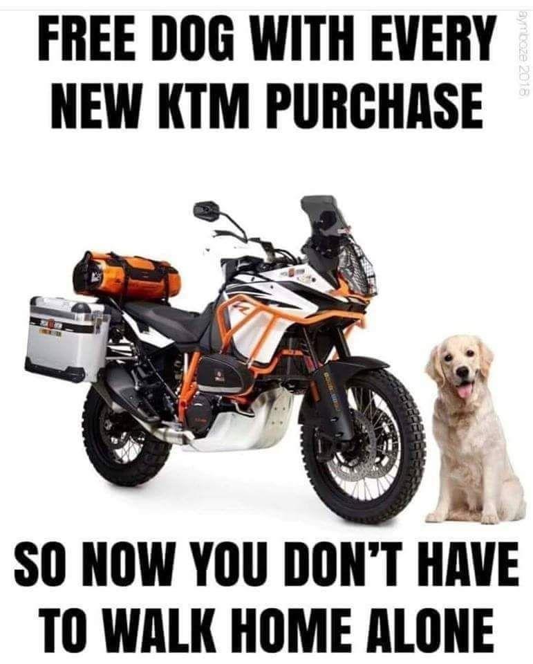 KTM-buy.jpeg