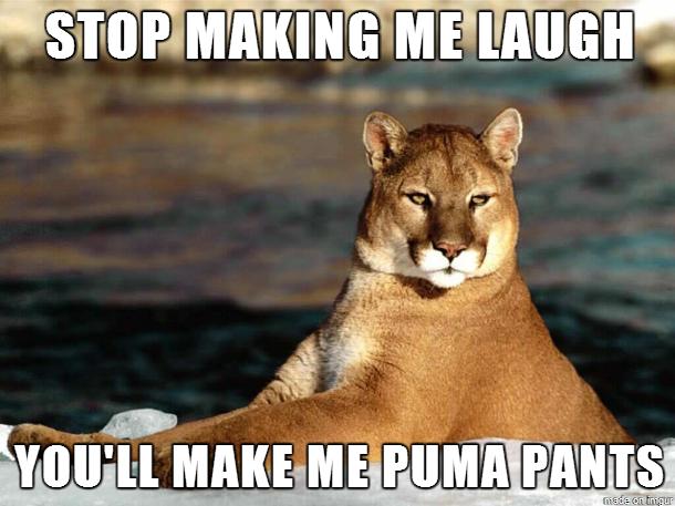 Stop-Making-Me-Laugh-Youll-Make-Me-Puma-Pants-Meme.png